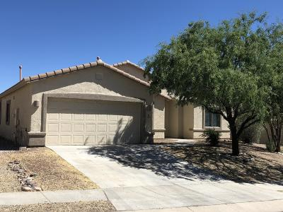 Vail Single Family Home For Sale: 13870 E Via Valderrama
