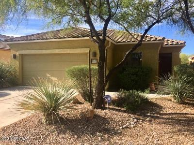 Tucson Single Family Home For Sale: 10389 Yew Place