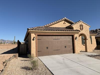 Tucson Single Family Home For Sale: 11998 N Raphael Way