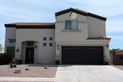 Pima County Single Family Home For Sale: 6295 W Ocotillo Meadow Drive