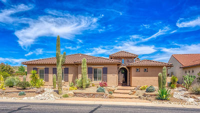 Tucson Single Family Home For Sale: 66236 E Box Elder Road