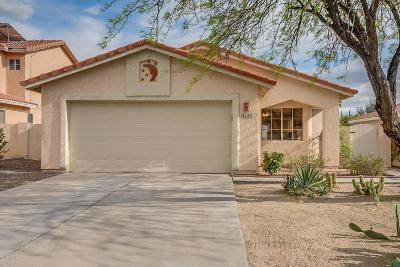 Pima County Single Family Home For Sale: 5125 W Blackbird Drive