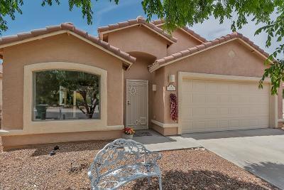 Tucson Single Family Home For Sale: 11239 N Flat Granite Drive