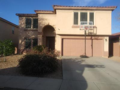 Tucson Single Family Home For Sale: 3564 N Boyce Spring Lane
