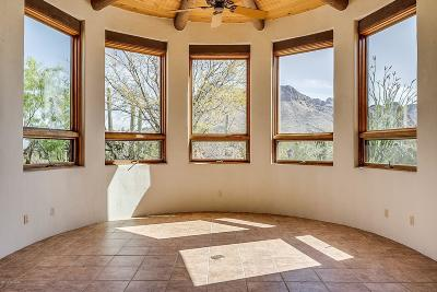 Tucson Single Family Home For Sale: 9925 W Ina Road