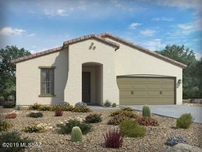 Tucson Single Family Home For Sale: 6768 E Via Arroyo Azul