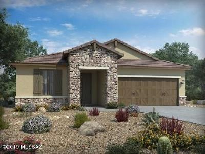 Tucson Single Family Home For Sale: 6802 E Via Arroyo Largo