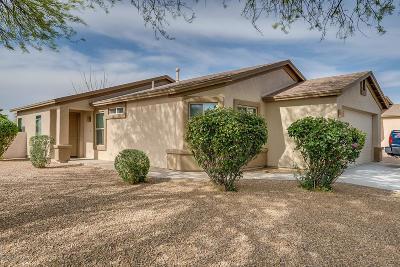 Single Family Home For Sale: 10071 E Desert Gorge Drive