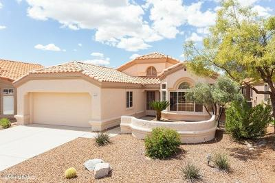 Pima County Single Family Home For Sale: 14215 N Trade Winds Way