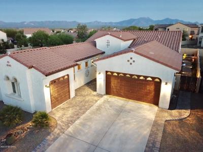 Sahuarita Single Family Home For Sale: 613 W Camino Curvitas