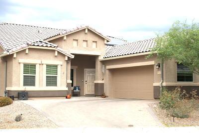 Marana Single Family Home For Sale: 9840 N Saguaro Breeze Way
