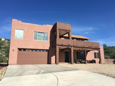 Tucson Single Family Home For Sale: 16251 N Lago Del Oro Parkway