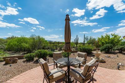 Single Family Home For Sale: 13020 N Burrobush Loop