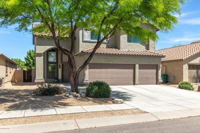 Pima County Single Family Home For Sale: 288 W Calle Paso Suave