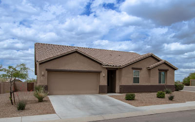 Marana Single Family Home For Sale: 11076 W Brown Ware Street