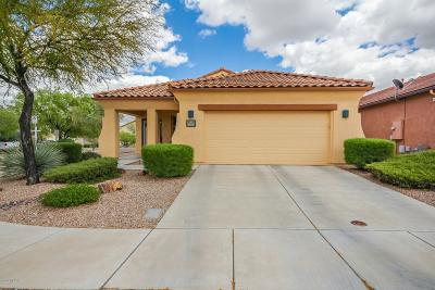 Tucson Single Family Home Active Contingent: 6039 S Wych Elm Place