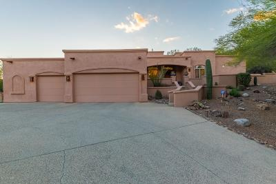 Tucson Single Family Home For Sale: 6801 E Snyder Road
