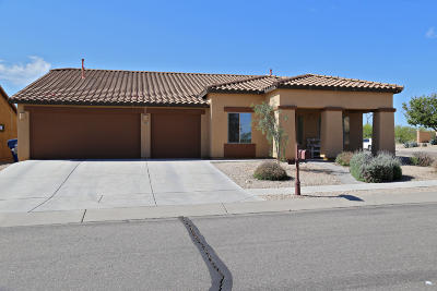 Pima County Single Family Home For Sale: 983 W Calle Barbitas