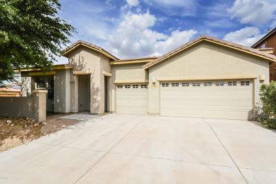 Sahuarita Single Family Home For Sale: 1065 E Pecan Orchard Loop