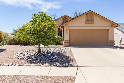 Pima County, Pinal County Single Family Home For Sale: 9170 E Spire Lane