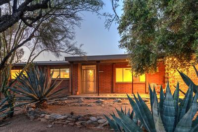 Single Family Home Active Contingent: 3529 E Nugget Canyon Place