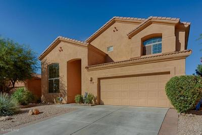 Tucson Single Family Home For Sale: 10470 E Rita Ranch Crossing Circle