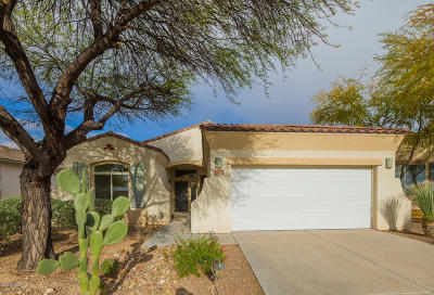 Pima County, Pinal County Single Family Home Active Contingent: 1228 S Desert Vista Drive