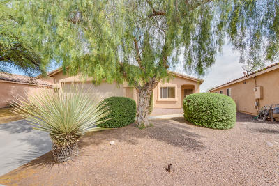 Tucson Single Family Home Active Contingent: 2182 W Roundwood Place