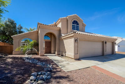Pima County Single Family Home For Sale: 5381 W Fireopal Way
