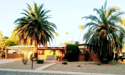 Tucson Single Family Home For Sale: 632 N Rook Avenue