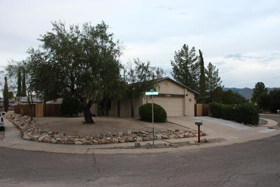 Tucson Single Family Home For Sale: 2798 S Pace East Drive