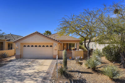 Marana Single Family Home For Sale: 13481 N Holly Grape Drive