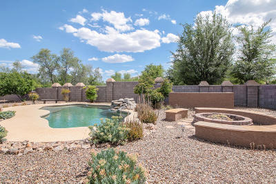 Sahuarita Single Family Home For Sale: 14607 S Camino Larga Vista