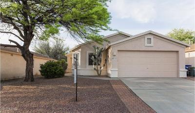 Single Family Home For Sale: 10103 E Desert Gorge Drive