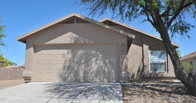 Pima County, Pinal County Single Family Home For Sale: 3699 S Spirit Stealth Drive