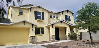 Pima County Single Family Home For Sale: 4912 W Calle Don Tomas