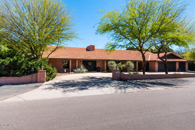 Tucson Single Family Home For Sale: 1800 N Forty Niner Drive