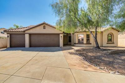 Tucson Single Family Home For Sale: 6791 W Rawlins Way