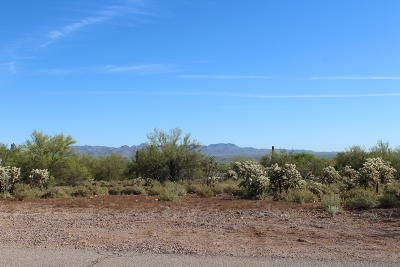 Tucson Residential Lots & Land For Sale: 6530 N Broom Tail Drive #1