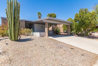 Pima County Single Family Home For Sale: 6965 N Village View Drive