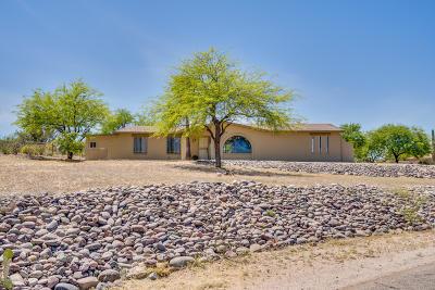 Pima County, Pinal County Single Family Home For Sale: 910 S Camino De Las Palmas