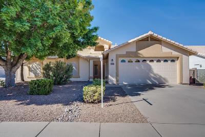 Tucson Single Family Home For Sale: 9244 E Big Sky Lane