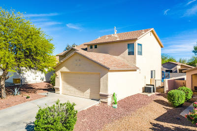 Pima County, Pinal County Single Family Home For Sale: 10150 E Desert Gorge Drive