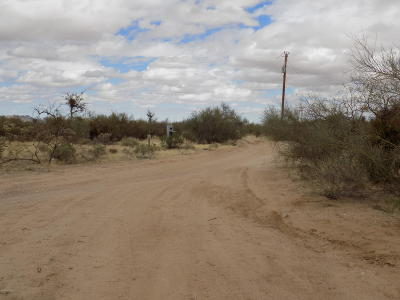 Tucson Residential Lots & Land For Sale: 10424 S Sierrita Mountain Road