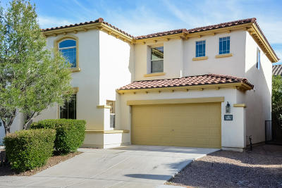 Pima County Single Family Home For Sale: 85 W Camino Rancho Palomas