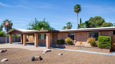 Pima County Single Family Home For Sale: 7651 N Lundberg Drive
