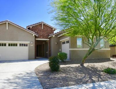 Pima County Single Family Home For Sale: 5485 W Dry Creek Court