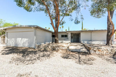 Tucson Single Family Home For Sale: 4501 N Bear Canyon Road