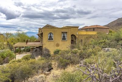 Tucson Single Family Home For Sale: 6395 W Lost Canyon Drive