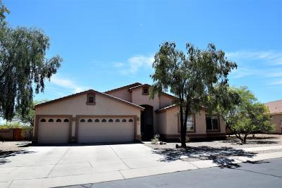 Tucson Single Family Home For Sale: 3648 N Trilby Wash Court